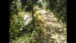 Roberts Ridge Report™,  Independence Trail, Nevada County, California, Hiking, West Bound 1 of 3
