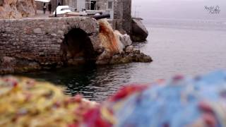видео Где обучиться яхтингу