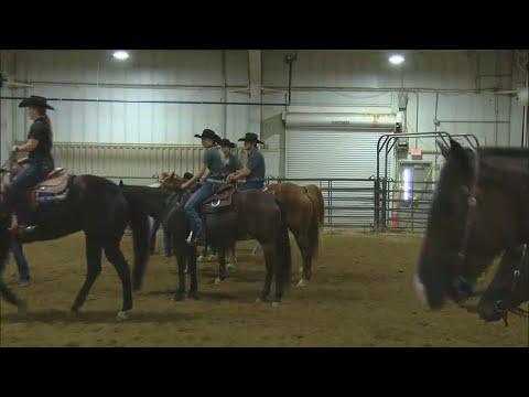 Community Spotlight: Equine Learning at Black Hawk College East Campus