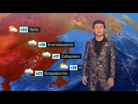 Погода сегодня, завтра, видео прогноз погоды на 11.8.2019 в России