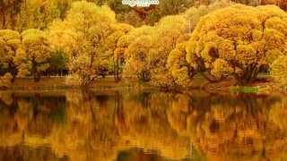 Эдуард Артемьев  Осенняя мелодия