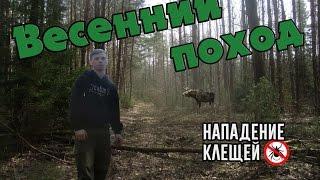 Весенний поход.Клещи.Дикие животные. Беларусь 2017