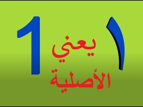 1=1  اغنية واحد يعني One    انشودة الارقام  اغاني ترفيهية  - Song  Wahed Means One -kids Song