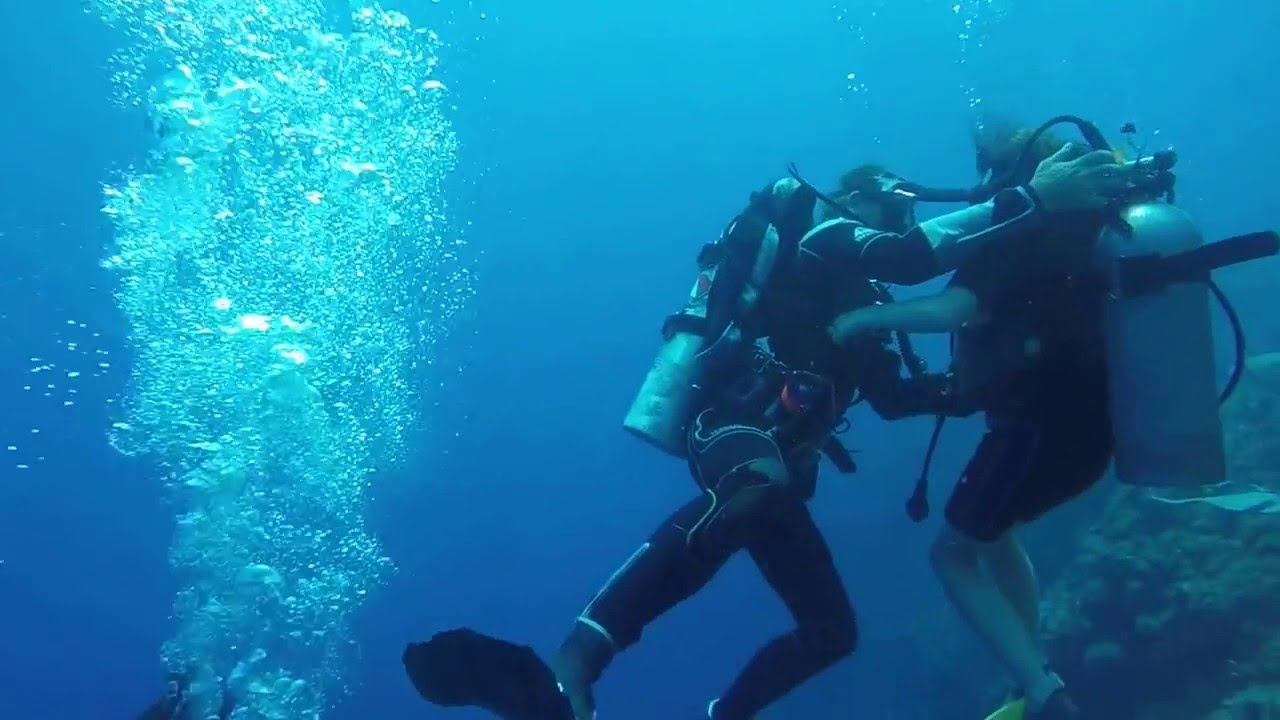 Wall Dive Part 1 Near Catalina Island, Dominican Republic