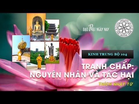 Kinh Trung Bộ 104 (Kinh Làng Sama) - Tranh chấp: Nguyên nhân và tác hại (11/06/2010)