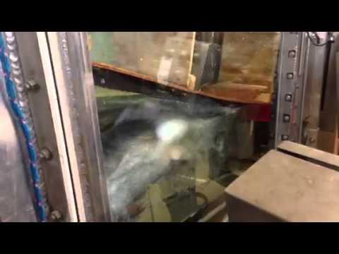 Fish Sorting Facility