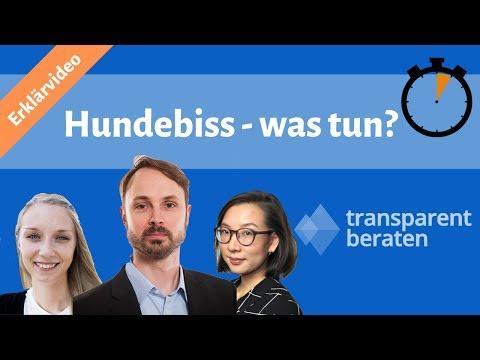 Hund Hat Gebissen: Was Tun? | Erklärung & Tipps (2019) [Schadensfall-Lexikon]