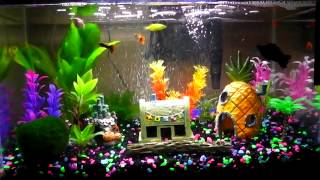 Relaxing Fish Aquarium Hd