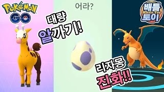 포켓몬고 대량 알까기 키링키 GET! 최고 등급 리자몽 진화까지 [배틀토이] Pokemon GO