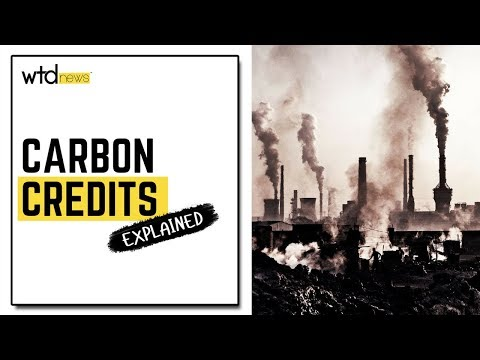 The Market Of Carbon Credits Explained