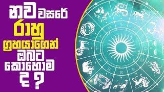 Piyum Vila | නව වසරේ රාහු ග්රහයගෙන් ඔබට කොහොම ද? | 03-01-2019 | Siyatha TV Thumbnail