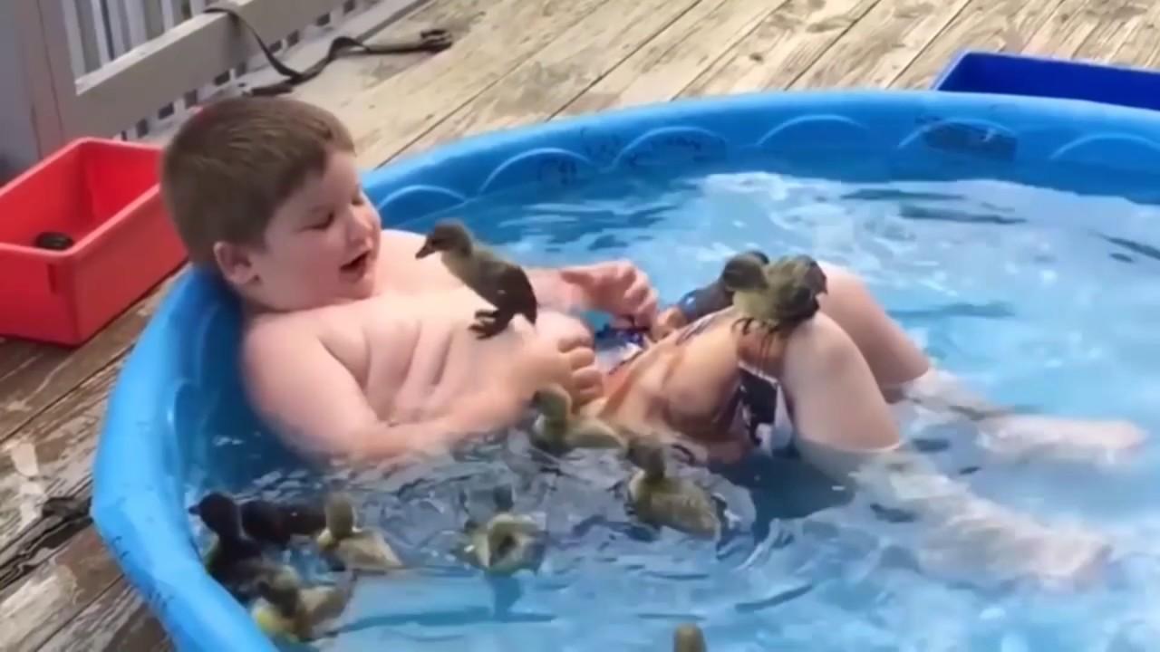 Faze tari de ras cu animale