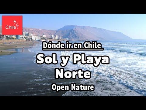 Dónde ir en Chile: Sol y Playa Norte - Naturaleza Abierta