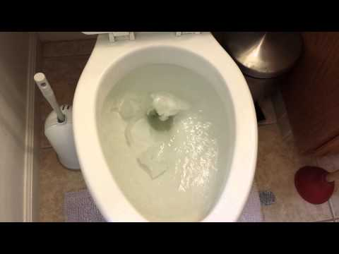 how to fix a clogged toilet yourself