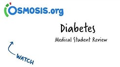 hqdefault - Diabetes Pathophysiology Powerpoint Slides