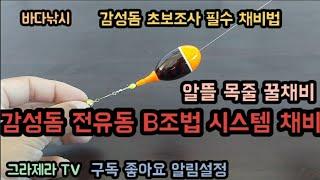 감성돔 전유동 B조법 시스템 구멍찌채비&알뜰 목…