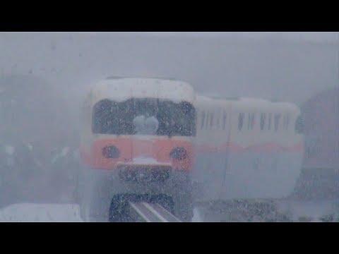 Disney Resort Line in the heavy snow (Tokyo Disney Resort)
