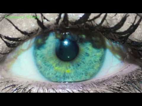 Get Sea Green Turquoise w/ Yellow Rings Eyes Fast ...