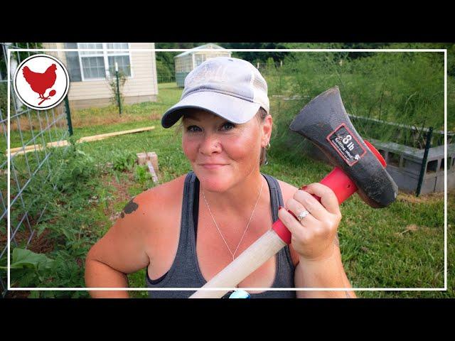 ONE MORE + Predator Season    A Good Life Farm Vlog
