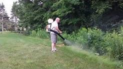 Massachusetts organic mosquito treatment by Marlboro Pest Control