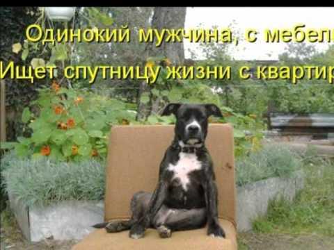 Улыбнись))) Ведь тебя,кто