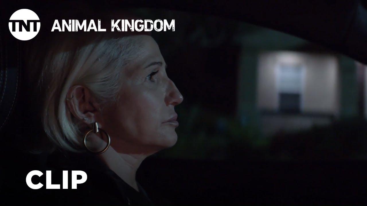 Download Animal Kingdom: Jackpot - Season 3, Ep. 11 [CLIP] | TNT