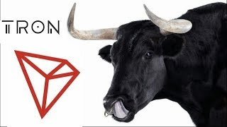 Update TRX DApps TRON Bullrun Possible With #TRON Records setting History Made