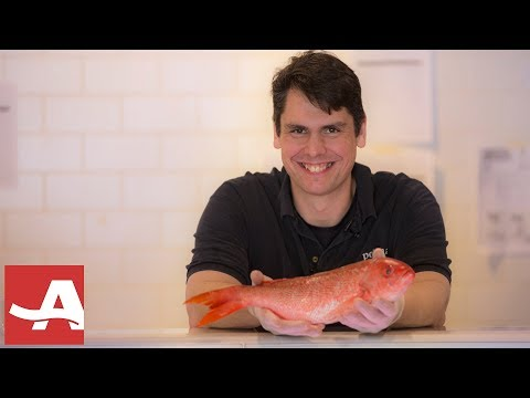 Tips For Picking Out Fish From A Fishmonger