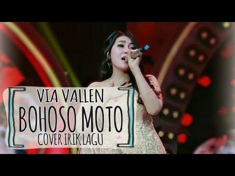 Bohoso Moto - Vita Alvia Cover By Via Vallen ( Banyuwangian 2018 )