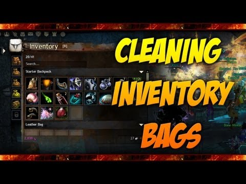 Guild Wars 2 - How To Keep your Inventory Clean / Using the Salvage Kit