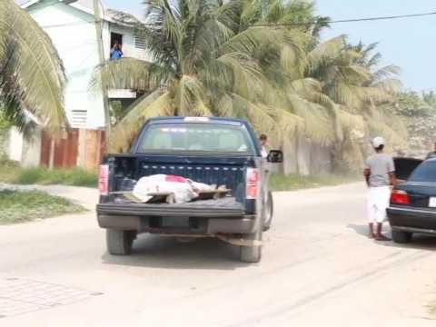 Taxi Driver Executed in Port Loyola