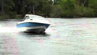 1984 Rinker 205V Cuddy Cabin- FOR SALE!!