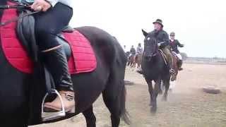 Hubertus w Mustangu