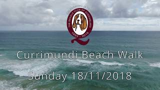 Beagle Club of Queensland - Currimundi Beach Walk 2018 thumbnail