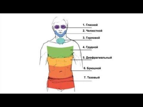 Психологические проблемы и мышечные зажимы – панцирь Райха