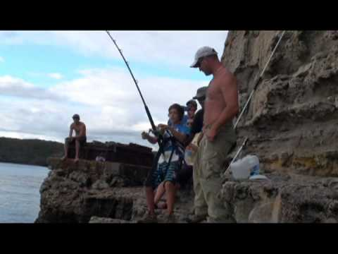 83kg Marlin Off The Rocks By 12yr Old Angelo