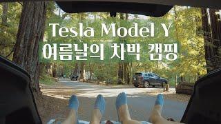테슬라 모델 Y | 여름날의 숲속 차박 캠핑 | 금요일…