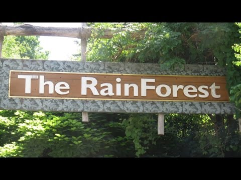 Cleveland Metropark Zoo's Rain Forest (7-14-16)