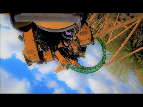 Cheetah Hunt Busch Gardens - Back Row POV