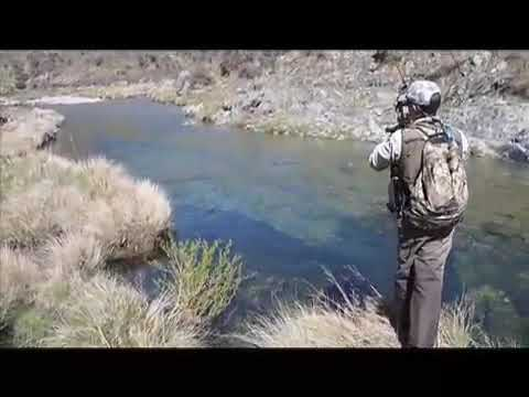 Fly Fishing South Island New Zealand Youtube