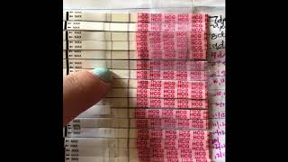 Opk And Pregnancy Test Line Progression!