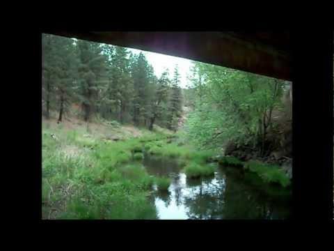 Eastern Oregon Redside Trout Fishing