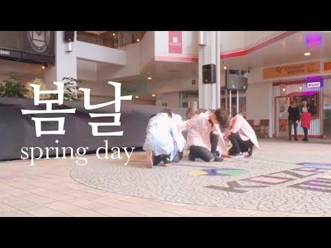 BTS (방탄소년단)_Spring Day(봄날) coverdance by 98년생