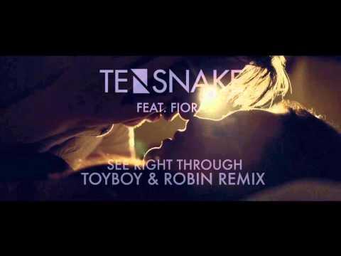 Tensnake feat. Fiora - See Right Through (Toyboy & Robin Remix)