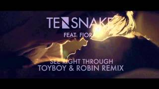 Tensnake feat. Fiora - See Right Through (Toyboy & Robin Remix)