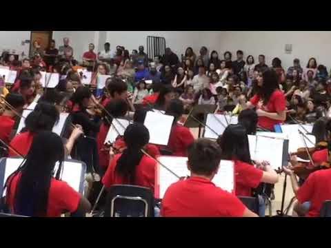 Duluth Middle School 2019 Ochestra
