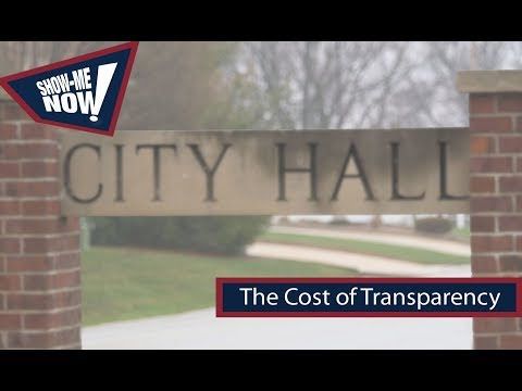 The Cost of Transparency