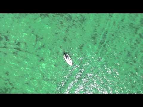 Savage Charters - Snook And Tarpon Fishing In Boca Grande, FL