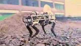 BigDog Quadraped Robot