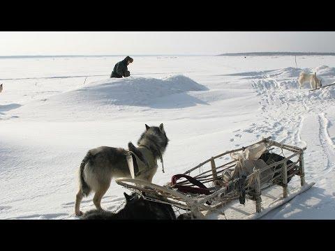 Счастливые люди | Енисей | Зима (серия 4) | Дмитрий Васюков